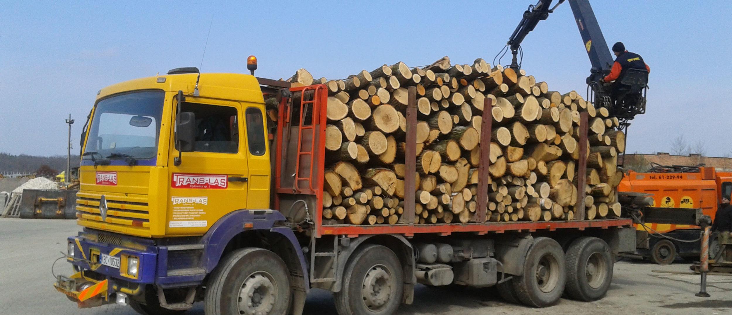 Specjaliści od transportu drewna