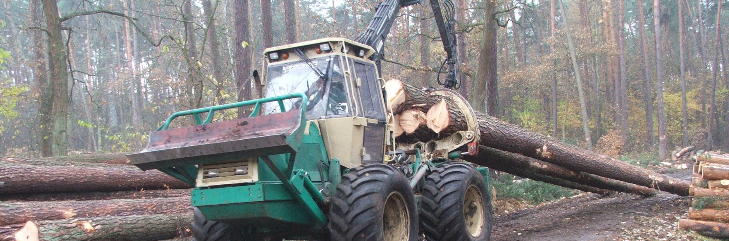 Zaawansowane usługi leśne